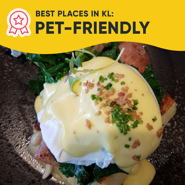 Best Pet-Friendly Places in KL