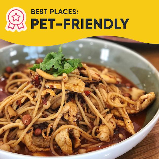 Singapore's Best Pet-Friendly Places