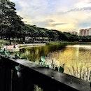 Sunday dinner by the pond!