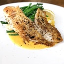 Pan-seared Snapper Fillet $9.9++