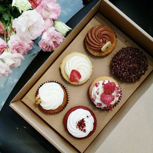 Some cupcakes for you?