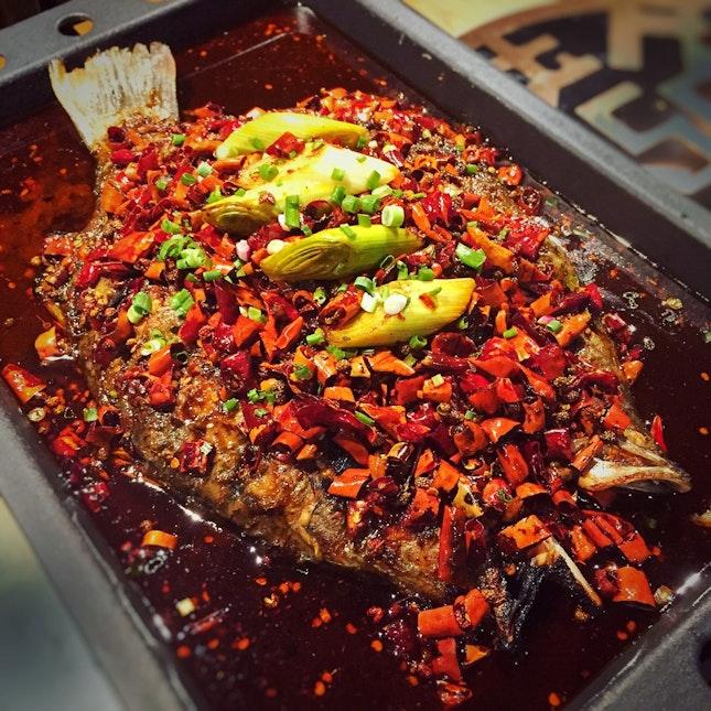For Satisfying Fiery Mala Fish