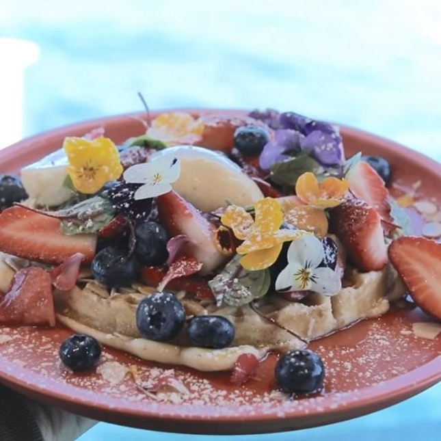 The prettiest waffles by the waters.