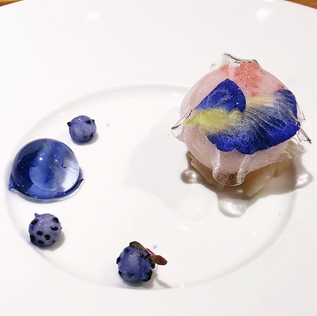 Really photogenic lychee martini sorbet wrapped in elderflower gelatine and blue pea flower with lychee martini burst.