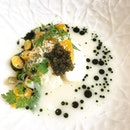 Burrata Pugliese :: Hybrid Beluga Caviar :: oat broth :: tomato from their Cameron Highland farm :: petai leaf @restaurantnouri #CoraInSingapore #finedining #foodporn #singapore #singaporeeats #singaporefoodie #hongkongfoodie #hongkongfoodblogger #foodblogger #foodstagram #foodstyling #foodphotography #iloveeating #ilovesharingfood #nomnomnom #instafood #instablogger #instalifestyle #igfood #foodlover #foodaddict  #ilovefood #eateateat #hungrymate #lifestyleblogger #lifestyletravellers #caviar  #burpple