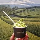 오설록 (OSULLOC Tea House)