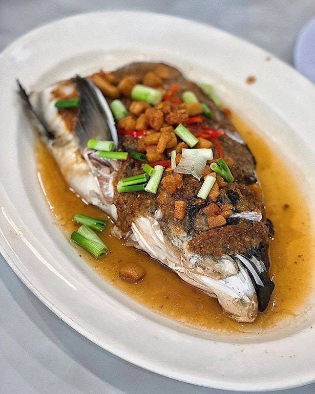 [Geylang] I would come for their Steamed Fish Head ($26), a Cantonese Classic with fermented bean paste and pork lard; theirs with nicely balanced flavours and tender fish.