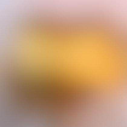 Scrambled Egg Sausage McGriddle