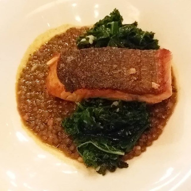 Tasmanian Sea Trout with puy lentils and lemon kale from db Bistro & Oyster Bar!