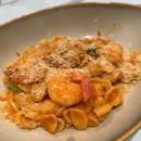 Prawn & Chorizo Orecchiette