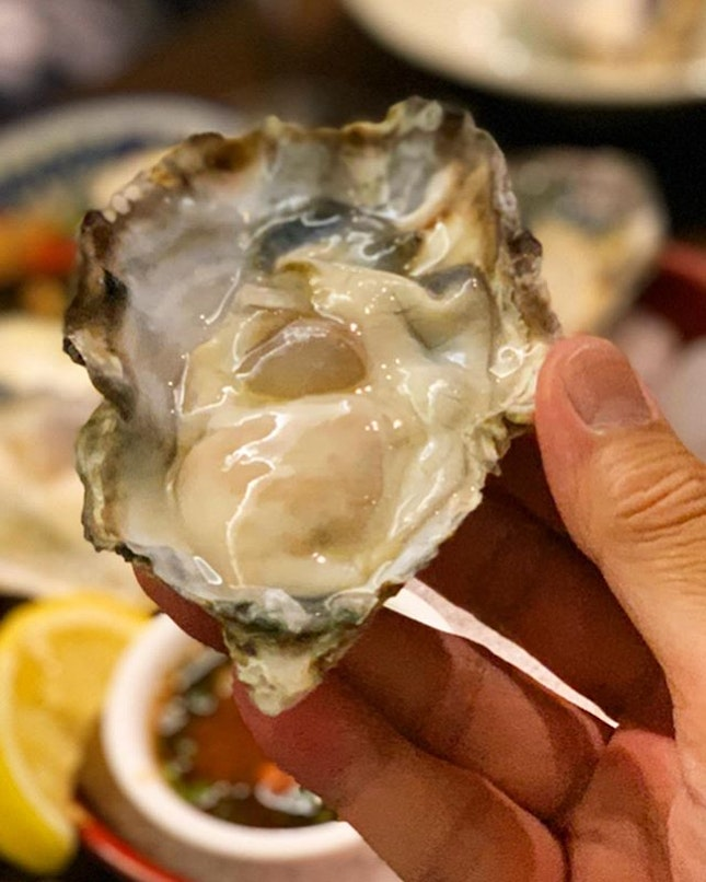 Of Oysters, Sashimi, Sake _ Huge, Plump & Juicy Fresh Japanese oysters at its best.