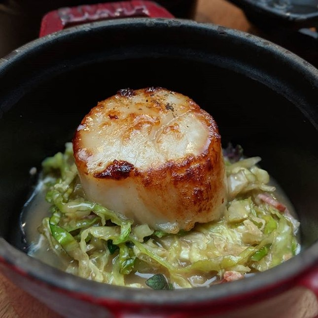 The Early Fatback: Pan-seared Scallops, Savoy Cabbage, Bacon from the British Sunday Champagne Brunch menu at Ash & Elm, InterContinental Singapore (@interconsin).