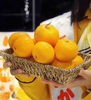 🍊Mikan tasting session at @JapanRailCafe!