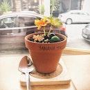 Banana Flower Pot ($7.50)