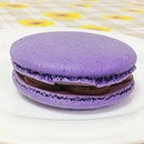 Hugeee Earl grey blueberry macaron with chocolate chantilly 🍬😸🍴
