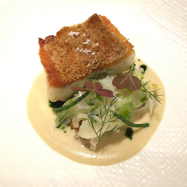 Grouper With Fennel