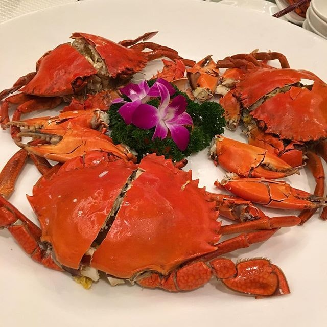 Happy feasting last night w the lovely family 😊 #wahlok #carltonhotel #singapore #sgig #igsg #sgfood #crab #yummy #delicious #latergram #burpple #instafood