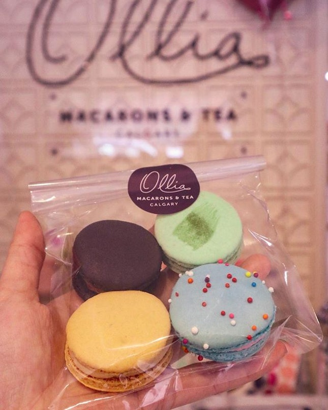I start to have craving for macarons after I try the ones from Ollia.