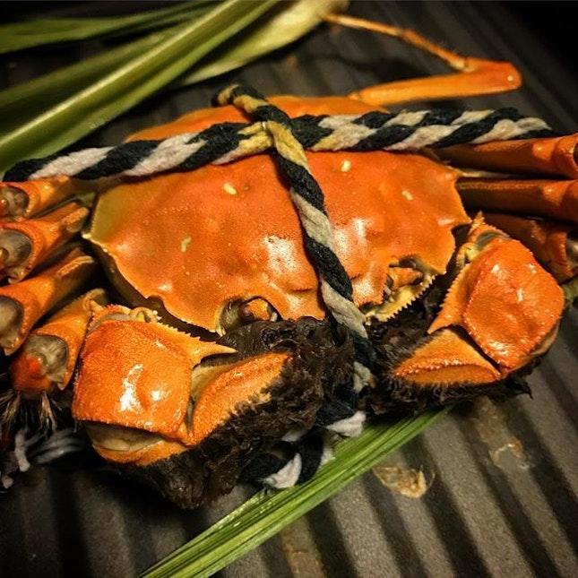 Hairy Crab Season!!!