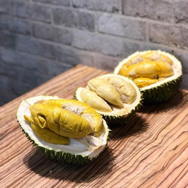 So the durian feast begins!