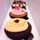 Twelve Cupcakes (Marina Square)