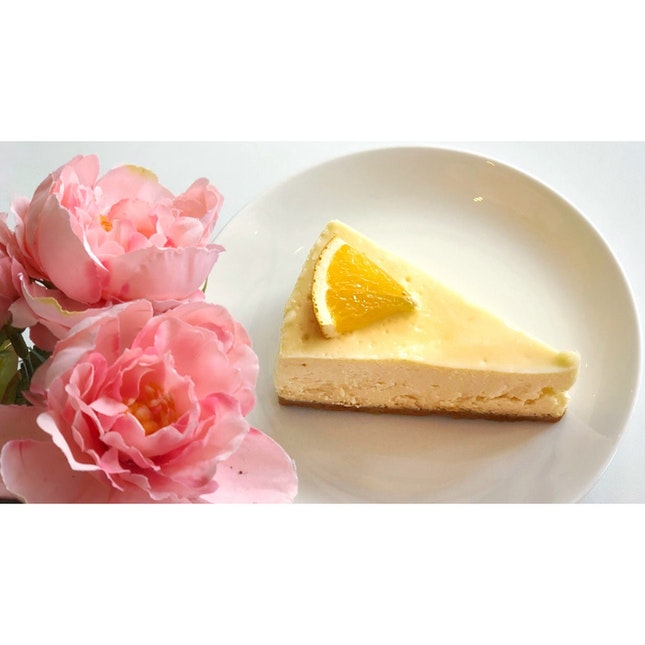   🍰 Cheesecake w a Touch of Citrus 。...