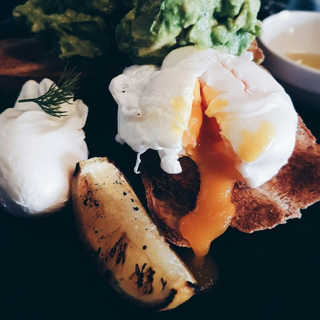 Best Poached Eggs Around