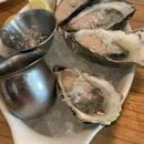 Fresh Oysters!!