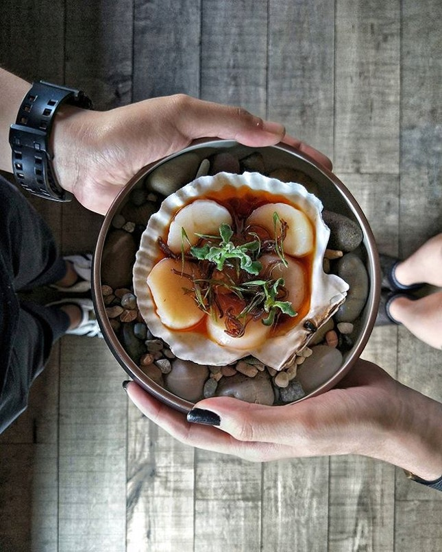 _ Venus _ Back here for a very late brunch with my bros @Spadely & @YeastMonster & were elated to spy new & innovative items including this Scallop Carpaccio ($16), one of the 3 Starters on their lunch menu.