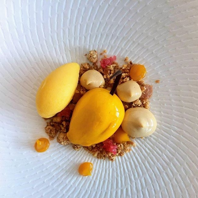 [Dolce Vita] - Summing up our meal is Mango, a beautiful assemble of mango mousse, coulis and a passionfruit sorbet.