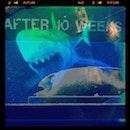 #shark #eggs #instablend #ig #iguser #blend #iphoneonly