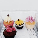 Cute Sample Cupcakes!